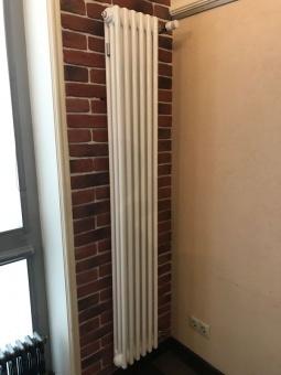 Радиатор отопления Arbonia 3180/06 N12 3/4 RAL 9016 фото